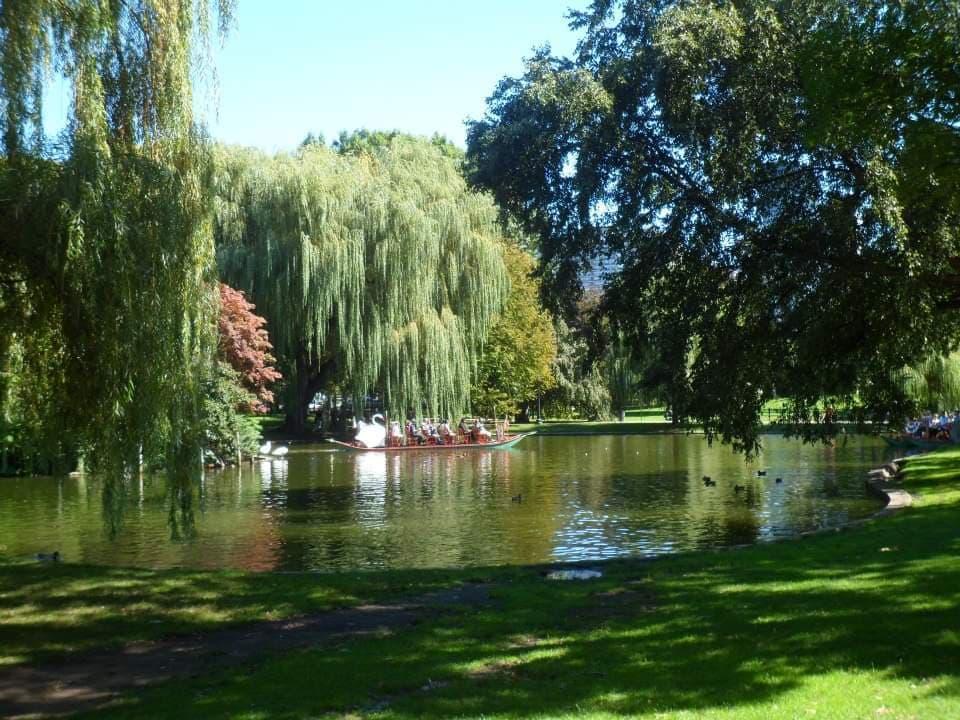 swan boats boston common